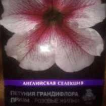 Семена, в Москве