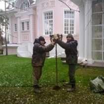 Пруд копка, в Иванове