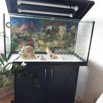 Продам аквариум, в Великом Новгороде
