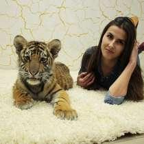 Малыш-тигренок ждёт тебя на фотосессию, в Нижнем Новгороде