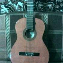 шестиструнную гитару, в Челябинске