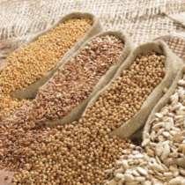 Продам зерно в Китай из Украины! 從烏克蘭向中國出售小麥, в г.Одесса