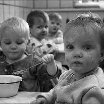 Примем игрушки детям сиротам, в Тимашевске