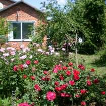 Продам дом 77,7кв. м и землю 26,5 сот. в Имеретинской, в Краснодаре