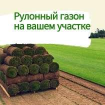 Живой натуральный рулонный газон, в Омске