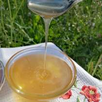 Мед алтайский. урожай 2021 года, в Барнауле