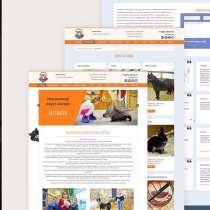 Разработка и продвижение сайтов / landing page /, в Москве