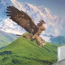 Дизайнерские натяжные потолки, в г.Шымкент