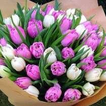 Тюльпаны на праздник, в Тольятти