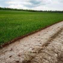 Рулонный газон (натуральный газон в рулонах), в Москве