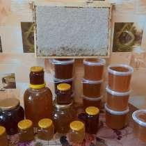 Свежий мёд с собственной пасеки, в Тюмени