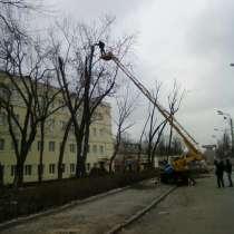 СПИЛ ДЕРЕВЬЕВ ЛЮБОЙ СЛОЖНОСТИ, ВЫВОЗ МУСОРА, ДРОВА, в Нижнем Новгороде