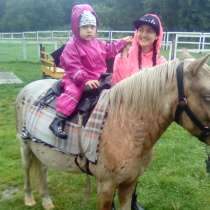 День рождения ребенка в питомнике пони. Полесск., в Калининграде