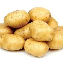 Картофель продовольственный в Астрахань, в г.Гродно