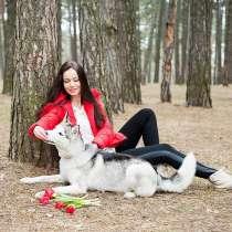 Ищу семью котора сможет содержать чистокровную собаку породы, в г.Хайфа