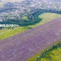Продам земельный участок 43 га, в Краснодаре