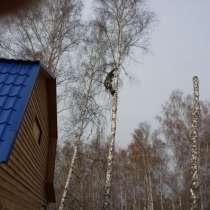 Спил, снос, удаление аварийных деревьев, в Новосибирске