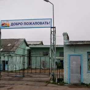 Комплекс зданий молочного завода на участке 1,6 Га. земли, в Пскове