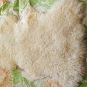 Шкуры овечьи, в Волгограде