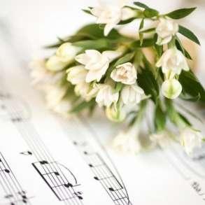 Создание на заказ песен и стихов, в Краснодаре