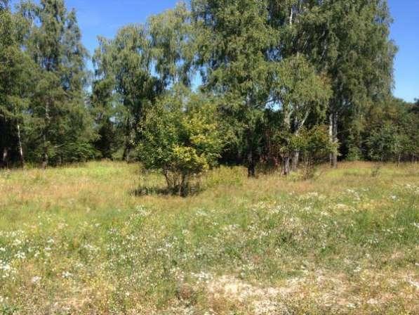 Продается земельный участок 12 соток в ДНП Шиколово,Можайский р-он, 95 км от МКАД по Минскому шоссе.