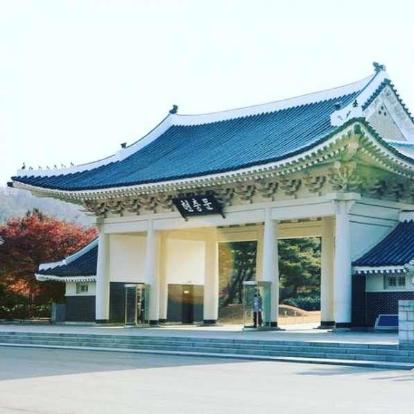 Мед. Туризм в Южной Корее, гид, переводчик