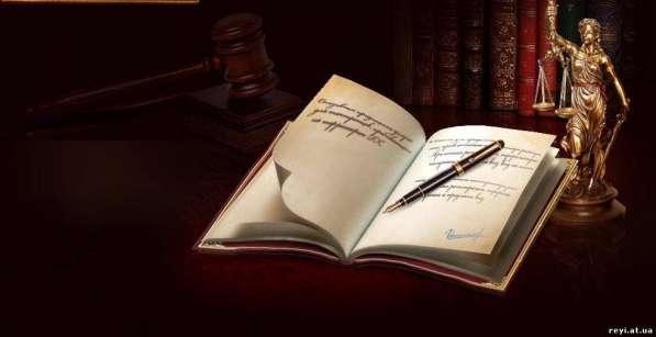 Защита интересов в судах и представительных органах