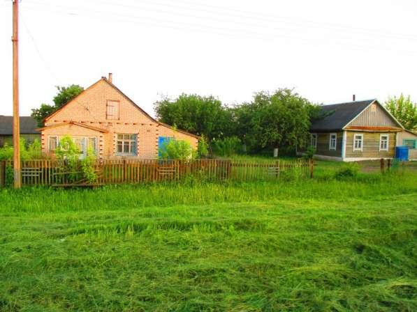 Продам дом в д. тетеревец 20 км. от г.клецка Минская область в фото 12