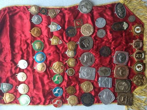 Коллекция. Значки и медали. 4000 шт в
