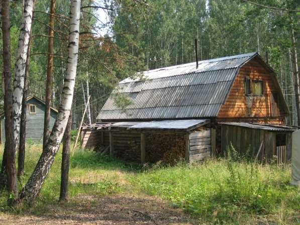 Отмечайте личные праздники в лесном доме на берегу водоема в Екатеринбурге фото 8