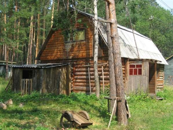 Отмечайте личные праздники в лесном доме на берегу водоема в Екатеринбурге фото 9