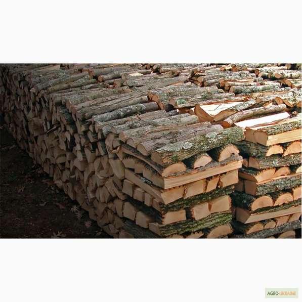 Дрова и топливные брикеты в Дмитрове фото 10
