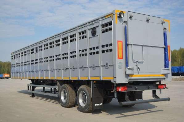 Скотовоз Тонар 98262