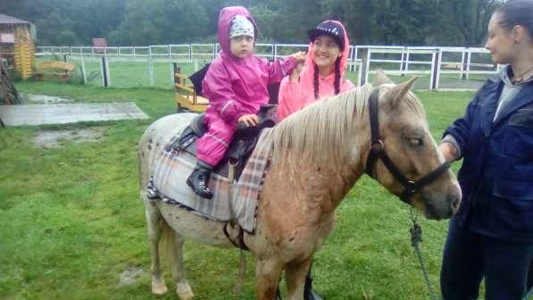День рождения ребенка в питомнике пони. Полесск.