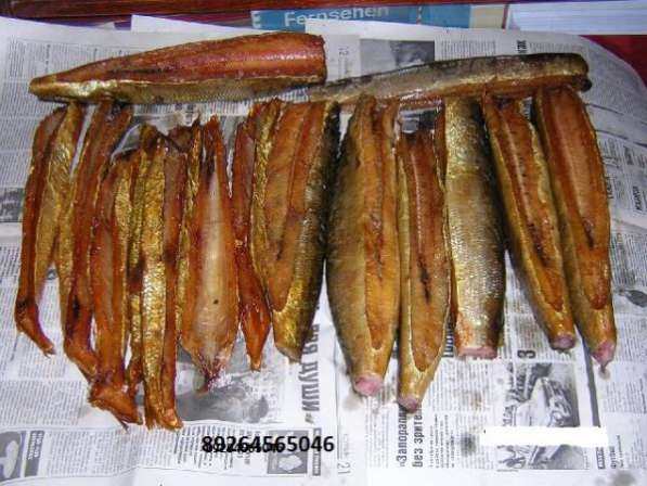 Продаю копченую северную рыбу
