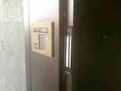 Двери подъездные; домофона и тамбурные в Новосибирске фото 12