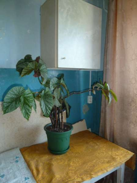 Продается комната гостиного типа, ул.Маршала Жукова, д.152 в Омске фото 6
