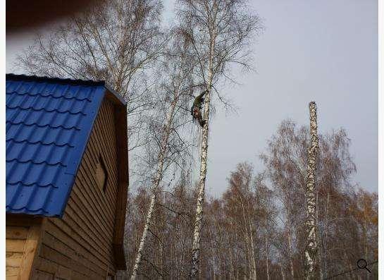 Спил, снос, удаление аварийных деревьев