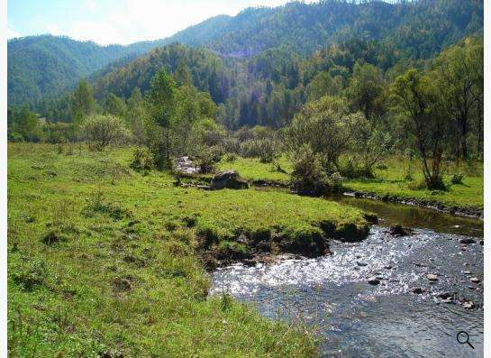 Земля в Горах Алтая на берегу Катуни в Манжерке, Белокурихе. в фото 11