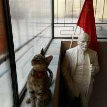 Продается музей СССР (возможно), нужен партнер, меценат, в Санкт-Петербурге