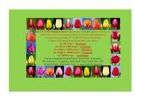 Продажа тюльпанов к 8-ому марта от производителя, в Москве