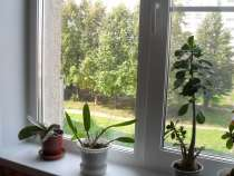 Продам квартиру 2 комнатную Шумилова 13, в Чебоксарах