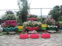 Вазон, в Челябинске