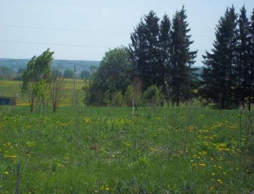Продается земельный участок 18 соток в Сокольниково, Можайский район, 123 км от МКАД по Минскому шоссе. Фото 2