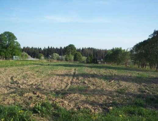 Продается земельный участок 10 соток под ЛПХ в д. Межутино, Можайский р-он, 143 км от МКАД по Минскому шоссе