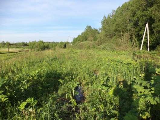 Продается земельный участок 16 соток в д. Тропарево (под ЛПХ), Можайский р-он,110 км от МКАД по Минскому шоссе. Фото 3