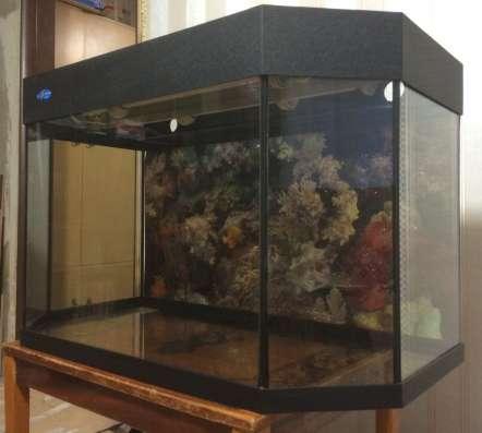 Аквариум Биодизайн 140 л