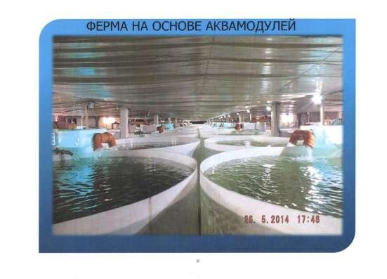 Продам оборудование по разведению рыбы! в Москве Фото 3
