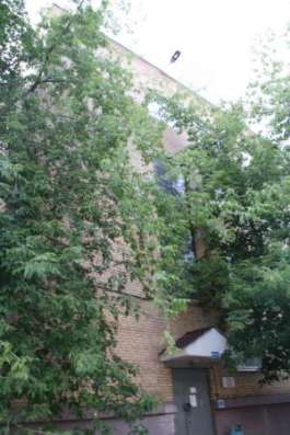 Офис 54 кв.м, м.Авиамоторная