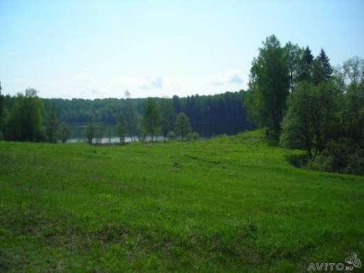 Продается участок 6,5 га по берегам двух озер в Бежаницком районе
